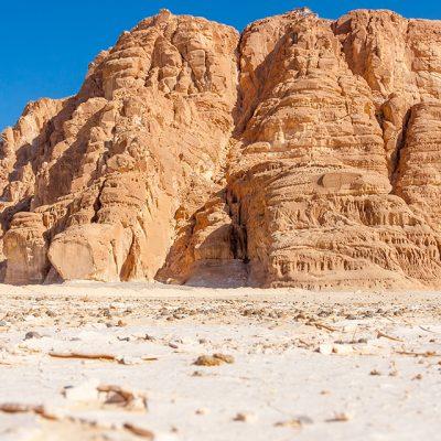 Письмо потомкам Ноаха к празднику Шавуот