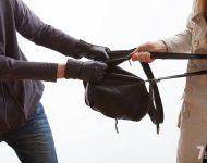 Запрет грабежа и разбоя